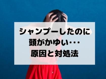 【悩み】シャンプーしたのに頭皮がかゆい・・・原因と対処方法